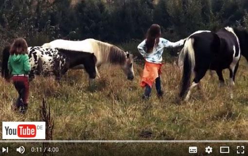 Feier Deinen Kindergeburtstag in Bergisch Gladbach am Ponyhof Sonnenschein