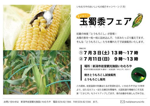 今週は加賀谷農園さんのとうもろこしがお出迎え!
