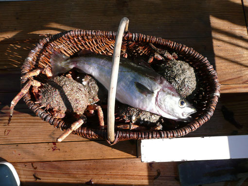 panier de pêche