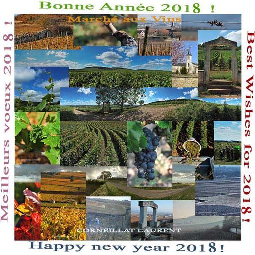 Bonne Année 2017 !   Happy new year 2017!