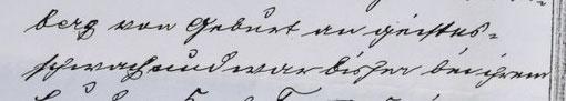 """""""berg von Geburt an geistesschwach und war bisher bei ihrem"""", Quelle: StaNt: Protokoll der Armendeputation vom 25.03.1907, §. 176"""