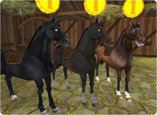 mehr pferde star stable hilfe info deine hilfe und. Black Bedroom Furniture Sets. Home Design Ideas