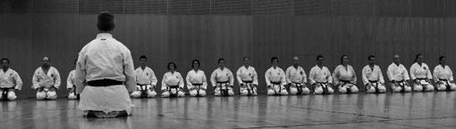 ikikata lehrgang 2012