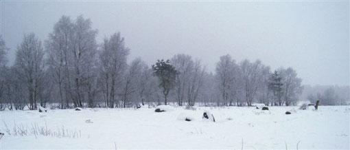 Das Medizinrad bei Stapel im Schnee