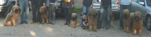 H-Wurf vom Hellbergblick (es fehlen2) Helene ist der 2. Hund von rechts