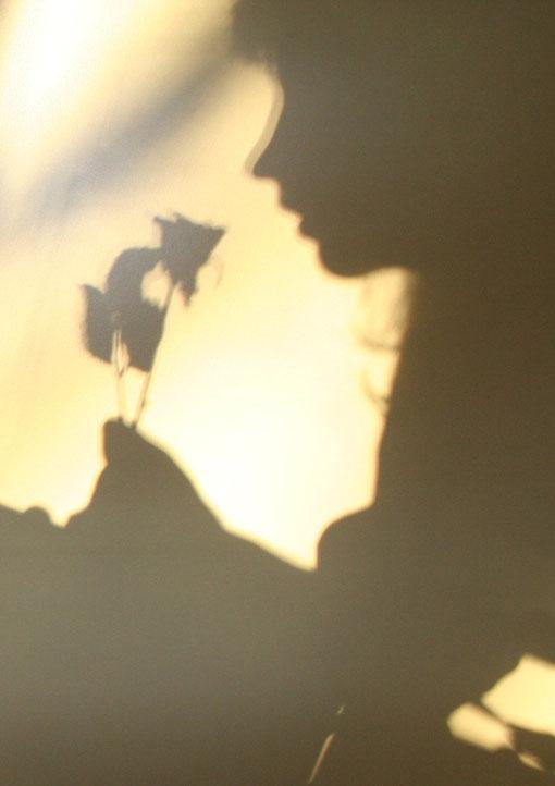 Fantasie und Wirklichkeit Fotografien und Gedichte Kathrin Steiger Schatten und Licht Prinzessin mit einer Rose