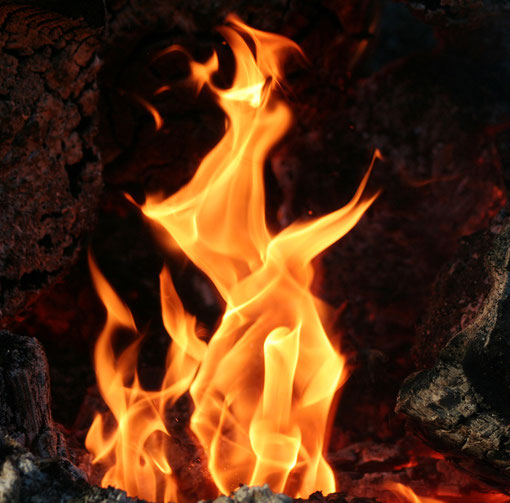 Fantasie und Wirklichkeit Fotografien und Gedichte Kathrin Steiger Feuer Flammen sehen für mich aus wie ein Drache ein Feuerdrache