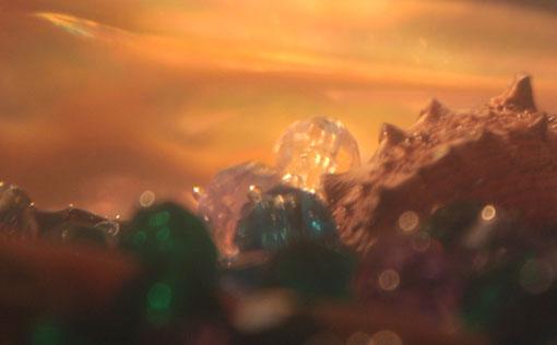 Fantasie & Wirklichkeit Fotografien und Gedichte Kathrin Steiger märchenhaft verträumt  Perlen Muschel warmes Licht Unterwasserwelt