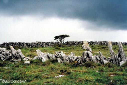 Gewitterstimmung über dem Burren, Karstlandschaft im Co. Clare