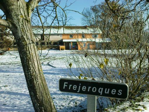 Fréjeroques sous la neige