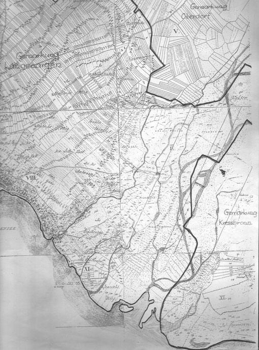 Argenaue 1825 mit zopfartig verflochten Wasserläufen eines Wildflusses