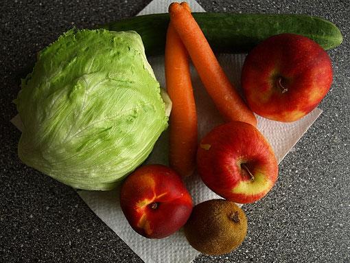 frisches Obst und Gemüse-gesunder Leckerbissen für Wellis