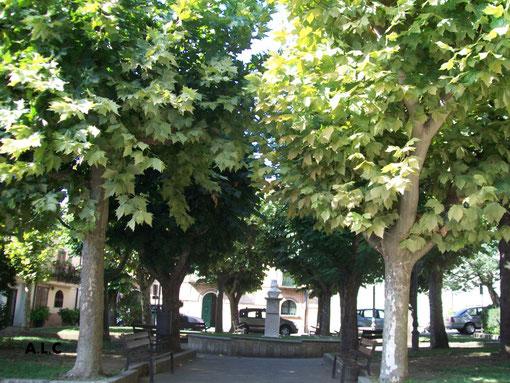 IL parco davanti il castello