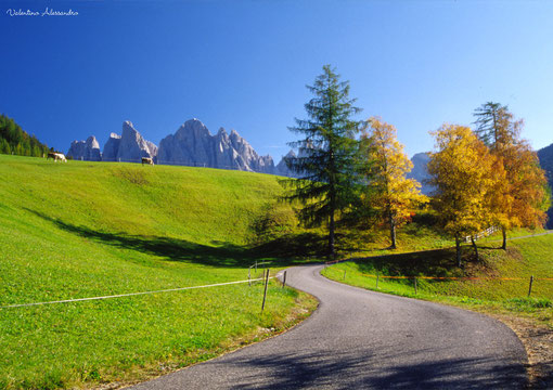Odle d'Autunno