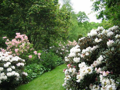 jardin de la Sedelle près de crozant