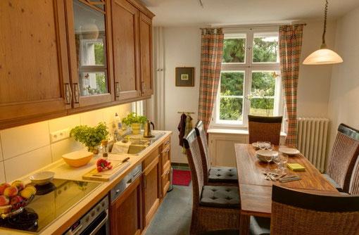 Wohnküche mit Ausgang zur überdachten Terasse