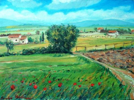 Mulinacci Sandro – Paesaggio toscano - olio tela - 40 x 30