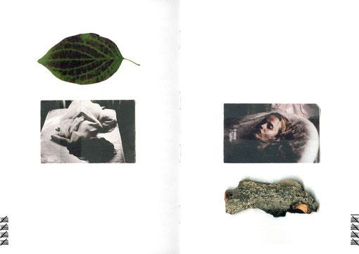 apollo-artemis, mode, design, nachhaltig, handgemacht, kollektion, tinnitus, stimmung, blatt, rind