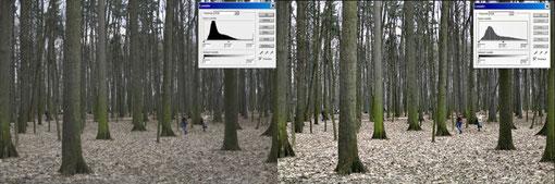 Уроки фотошоп обработка фотогнрафий