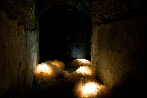 »Bewohner« 2011 · · · · · · · · · Holzwolle · Led-Leuchtkette · Mp3-Player · Aktivboxen · Grösse variabel ······ Photo Jens Sundheim