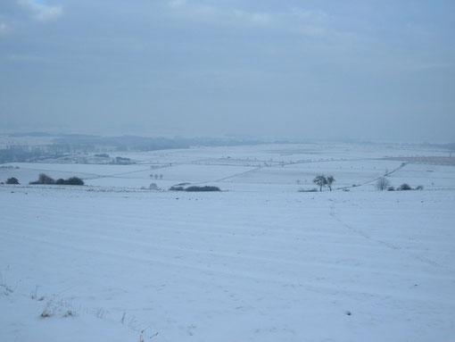 Blick vom Ellenser Wald in Richtung Ellensen / Dassel am 17.1.2009