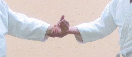 ③転換して母指先が天に向かう さらに側頸の付け根に母指先が向かうと降氣の形