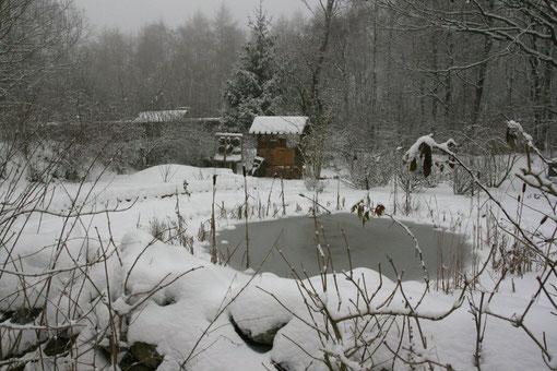 Der Naturgarten mit Teichen, Mauern, Insektenhotel und Beerensträuchern im tiefsten Winter. Ein Besuch im Naturschutzzentrum lohnt sich auch in der stillen Jahreszeit.