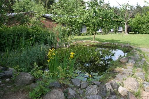 Naturschutz-Zentrum Dammer Berge- unterschiedliche Biotopelemente auf engem Raum. Auch in einem kleinen Garten kann jeder etwas für die Natur tun. Mut zur Wildnis!