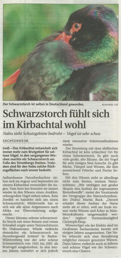LKZ vom 26.09.2007 über Schwarzstorch im Kirbachtal