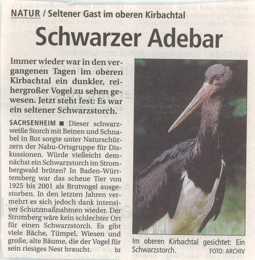 Bietigheimer Zeitung vom 26.09.2007 über den Schwarstorch im Kirbachtal