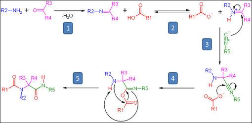 ▻Ugi reaction - organic-reaction com