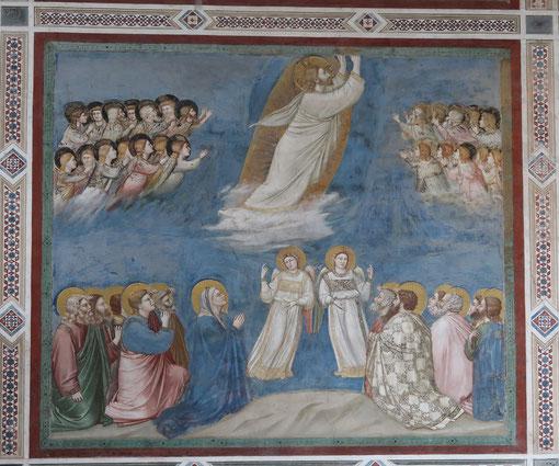 Giotto-Padoue- chapelle des Scrovegni (1303-1306)