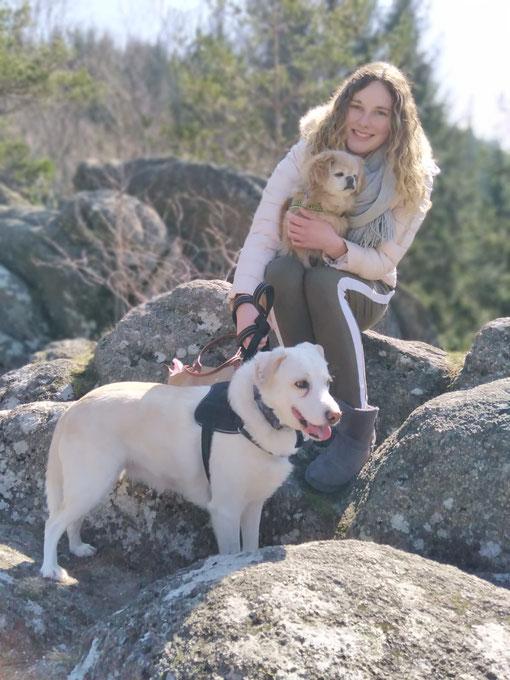 26.03.2020 Elodie beim Spaziergang mit ihren Hunden