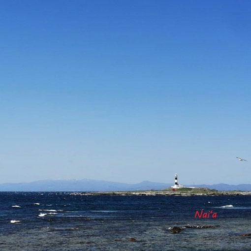 北海道 青森県 大間町 大間 本州最北端 東北 弁天島 津軽海峡 灯台