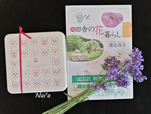 岩手県奥州市 東京 保護猫 田舎の花 暮らし 庭仕事 ラベンダー
