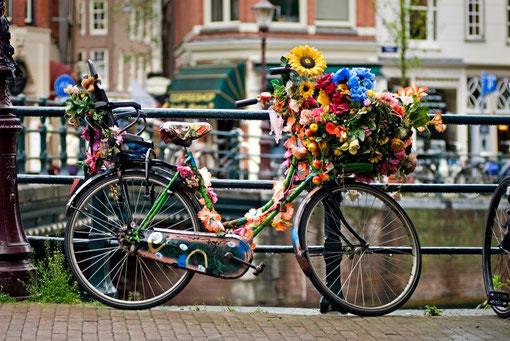 1. Platz Amsterdam