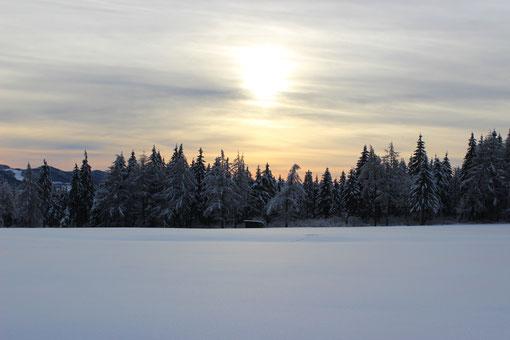 Winterliche Sonnenuntergänge
