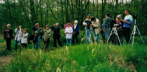 NABU Neckargemünd: Die Natur im Auge - mit zwei Augen auf die Natur