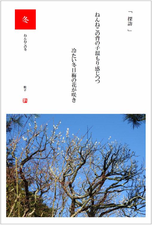 2017/11/11制作 ねんねこの冬  北鎌倉東慶寺の白梅