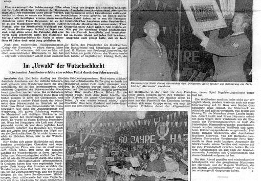 Die BMK Waldbach beim Gästekonzert in Auenheim