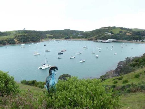 Bay de Matiatia depuis Headland