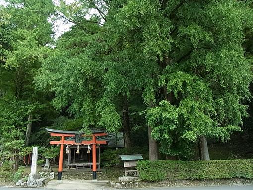 「岩戸落葉神社」‥風情のある名前に惹かれてやってきました。