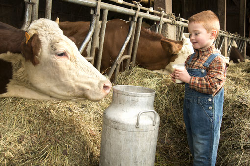 Atelier Consom'acteur Traite des vaches