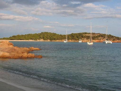 Rondinara-Bucht
