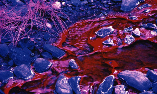 Geothermal spring in infrared false color; Mayi ya Moto, DRC.