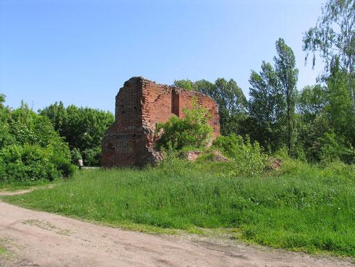 В заброшенном городском парке обнаружил руины 700 летней кирхи, кое где по периметру старого города просматривались остатки городской стены но их надо фотографировать осенью или весной. т.к. за зеленью их не видно.