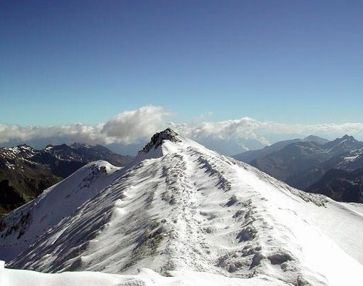 Gipfelgrat Cevedale