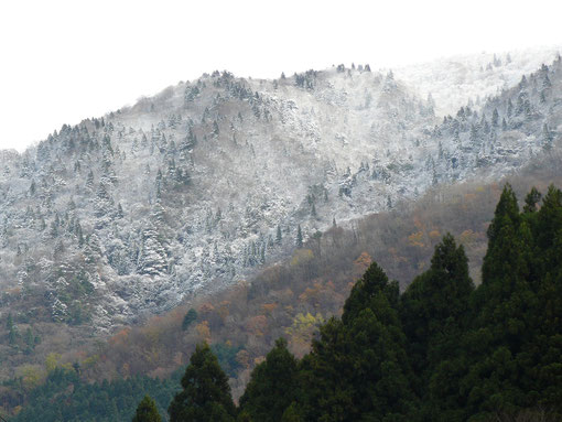 武奈が岳に雪