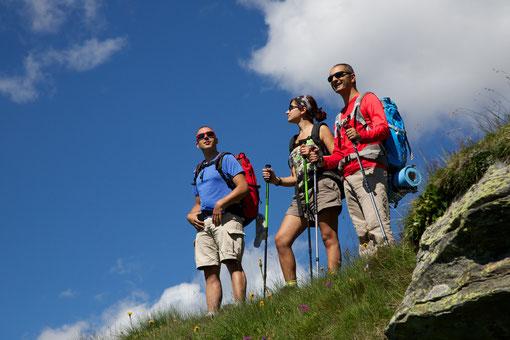 Etapas y itinerarios del Camino