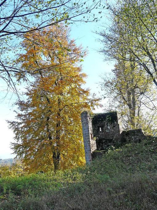 L'Ochsenstein